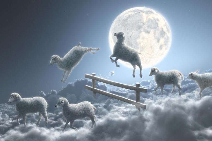 sheep-jumping-over-fence-in-a-cloudy-moon-scene-dieter-spannknebel
